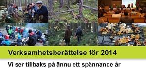 ÅB2014_small